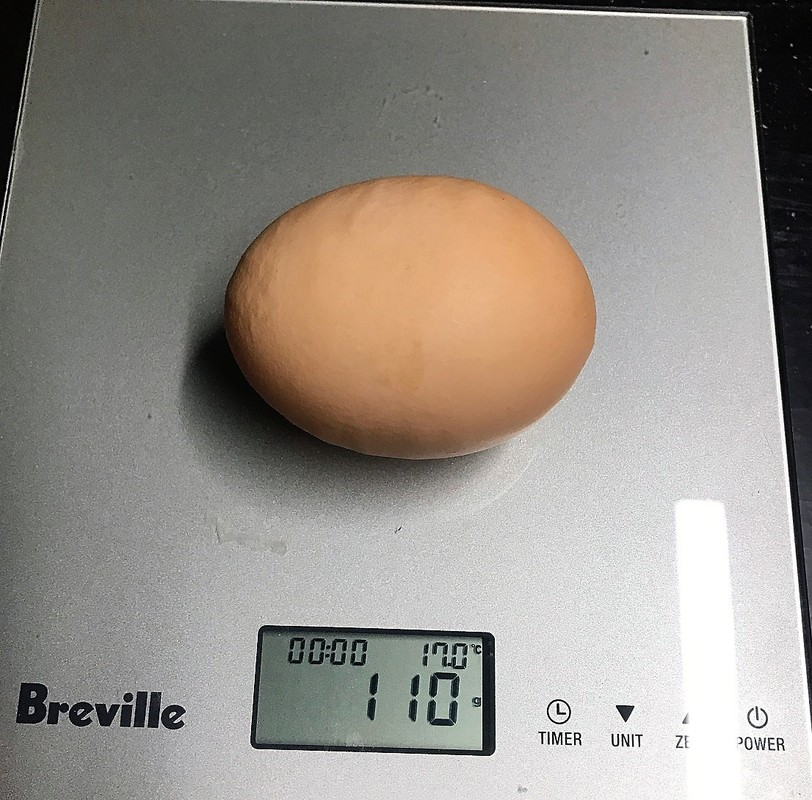 Hilltops pastured eggs, biggest egg, record egg, 110g weight one egg